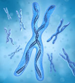 Chromosome x, DNA Strands — Stock Photo