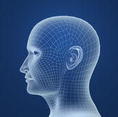 Human head wire model — Stock Photo