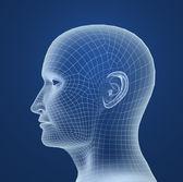 Human head wire model — Stock Photo