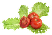 Tomatoes on salad leaf — Stock Photo