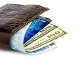 Leather wallet with money 02 — Stock Photo