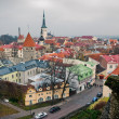 Panorama of Tallinn — Stock Photo