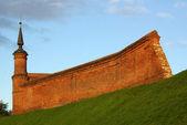 Torre e fortezza muro — Foto Stock
