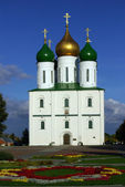 Assumption Cathedral — Stock Photo