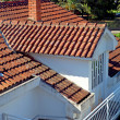 Tiled roof - Foto Stock
