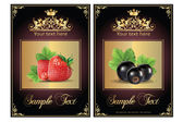 Strawberry and black currant. vector illustration of a realistic — Stock Vector