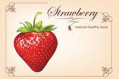 Strawberries. vector illustration — Stock Vector
