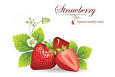Strawberries. vector illustration of a realistic — Vector de stock