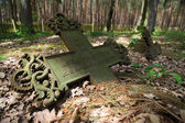 The old cementary — Stock Photo