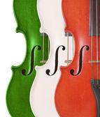 Tricolore violini — Foto Stock