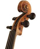 Violin Cover — Stock Photo