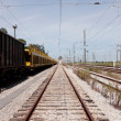 Single railway to horizon with empty cargo wagons on side — Stock Photo