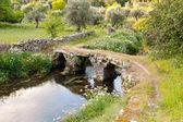 Stone bridge over small river against rural landscape — Stock Photo