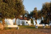 Assentos de pedra perto da pequena casa rústica ao entardecer, em portugal — Foto Stock