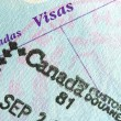 Passport Stamp - Stock Photo