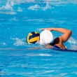 Stock Photo: Water Polo Game