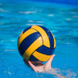 Water Polo Game - Stock Photo