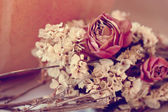 Dried flowers — Stock Photo