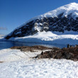 Antarctica — Stock Photo #7496527