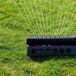 Grass sprinkler — Stock Photo