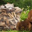 Firewood in Net Bag — Stock Photo