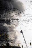 Firefighter Brandeinsatz — Stock Photo