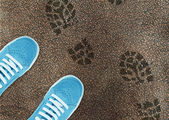 Blue sport shoe on street — Stock Photo