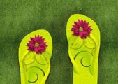 Colorful Flip Flops on green grass — Stock Photo