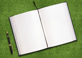 Blank book on grass — Stockfoto