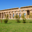 Paestum — Stock Photo #7302527
