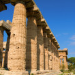 Paestum — Photo #7360102