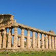 Paestum — Stock Photo #7360113