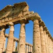 Royalty-Free Stock Photo: Paestum