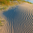 Sand dunes with helmet grass — Stock Photo #7313549