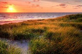 Seaside with sand dunes at sunset — Stock Photo