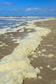 Mousse sur la plage dans les vagues — Photo
