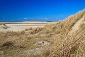 Dune di sabbia sulla spiaggia — Foto Stock
