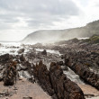 Rocky coastline — Stock Photo