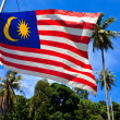 National flag of Malaysia — Stock Photo