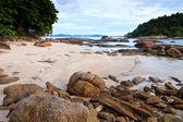 тропический каменистый пляж с дождевой лес — Стоковое фото