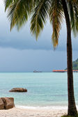 Resort near the beach on a tropical island — Stock Photo