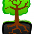 Tree. Roots and krone — Stock Vector #7430457