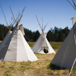 Teepee Camp In Meadow - Stok fotoraf