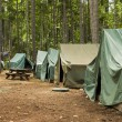 Постер, плакат: Boy Scout Campground