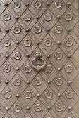 Medieval Castle Door — Stock Photo
