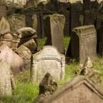 Old Prague Jewish Cemetery — Stock Photo #7358632