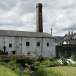Постер, плакат: Irish Whiskey Distillery