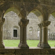 Ancient Abbey Cloisters — Foto Stock