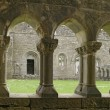 Ancient Abbey Cloisters — Stock fotografie