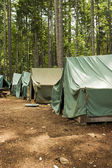 Tents At Summer Camp — Stock Photo